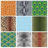 Set of seamless textures of animal skins, — Stock Vector