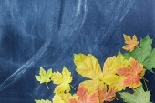 Autumn leaves and the teachers' board — Stock Photo