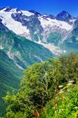 The tops of the mountains. Dombay, — Stock Photo