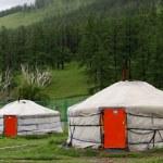 Mongolian Yurts — Stock Photo #62477821