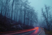 Road with fog and black ice. — Photo