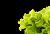 Fresh green salad — Stock Photo