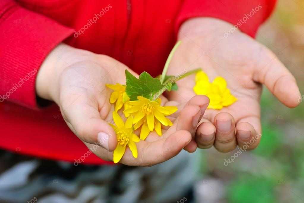 Цветы весной картинки для детей