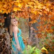 Young woman in a romantic autumn scenery — Stock Photo #52955479