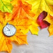 An old clock is on autumn maple leaves — Stock Photo #53436363