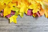 秋天的叶子在老木背景。与副本空间 — 图库照片