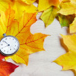 An old clock is on autumn maple leaves — Stock Photo #54370659