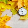 An old clock is on autumn maple leaves — Stock Photo #54370665