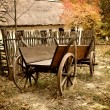 Vintage wooden cart in the yard in the autumn — Stock Photo #54522999