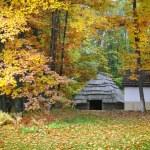 velha cabana com um telhado de palha na floresta de outono. Museu Ucraniano da vida e da arquitetura — Foto Stock #54523057