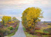 Autumn landscape is with a road — Stock Photo