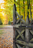 Old wooden gate open to the park — Stock Photo