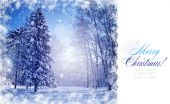 Postcard with beautiful winter landscape — Foto de Stock