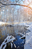 Beautiful winter landscape with the river — Stockfoto