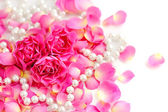 Pink roses and pearls on white background — Стоковое фото