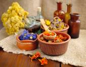 Healing herbs and tinctures in bottles on sackcloth, dried flowers, herbal medicine — Photo