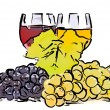 Drawn grapes and glass of wine — Stock Photo #62668899