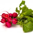 Bunch of fresh red radishes with green tops isolated on white background — Stock Photo #69946275
