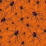 ������, ������: Poisonous spiders