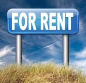 For rent road sign — Zdjęcie stockowe