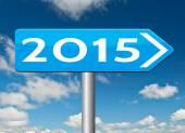 2015 new year — Stockfoto