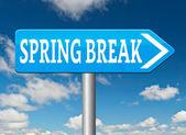 Vacaciones de primavera — Foto de Stock