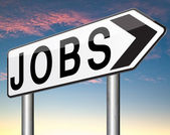 Job search — Stockfoto