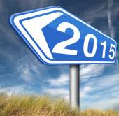 2015 new year — Stock Photo