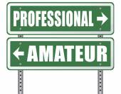 Professional or amateur road sign — Stock Photo