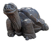 Carved giant tortoise — Stock Photo