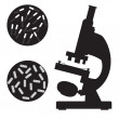 Black medical microscope and bacterium. — Stock Vector #78770414