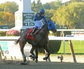 Private Zone Wins The Vosburgh Stakes — Stock Photo