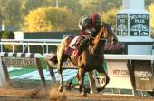 Tonalist Wins the Million-Dollar Jockey Club Gold Cup — Stock Photo
