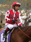 Thoroughbred Jockey Fernando Perez — Stock Photo