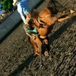 Постер, плакат: Bucking Bronco Rodeo