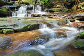 Wasserfälle und kleine Stream Australien — Stockfoto