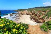 Some of the caves at Caves Beach NSW Austraia — Stock Photo