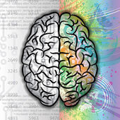 Human brain color pattern — Stock Vector