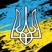 Ukraine flag — Stock Vector