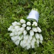 Close-up of wedding bouquet on grass — Stock Photo #74259321