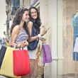 Two friends doing shopping — Stock Photo #55329651