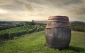 Wijn vat — Stockfoto