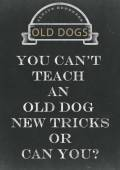 You Can't Teach An Old Dog New Tricks Hand Written On A Chalkbo — Stock Photo