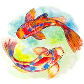 Mano acquerello disegnato koi pesci — Vettoriale Stock