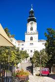 Castello di nitra, slovacchia — Foto Stock