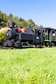Steam locomotive, Viglas, Slovakia — Stock Photo
