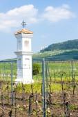 God''s torture with vineyard, Palava, Czech Republic — Stock Photo