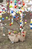 Easter tree — Stock Photo