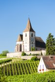 Church with vineyard, Hunawihr, Alsace, France — Stock Photo