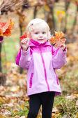 Little girl in autumnal vineyard — Stock Photo